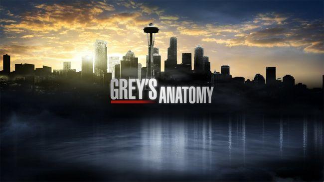 gris`s Anatomy
